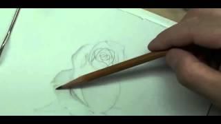 Рисуем розу карандашом | Crash ROSE #4(Рисование, как рисовать, рисовать карандашом, научиться рисовать, уроки рисования, как научиться рисовать,..., 2015-10-04T17:02:33.000Z)