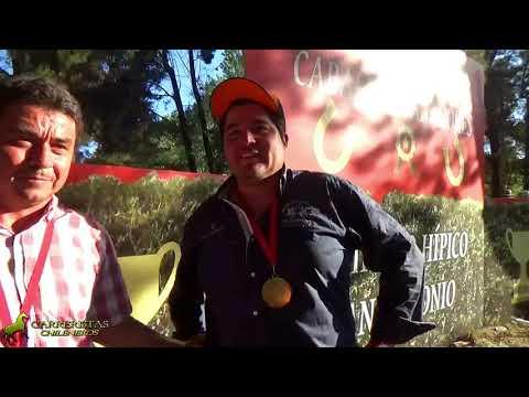 MISIONERA /Copa Reina de La Recta 2018/ complejo hípico San Antonio