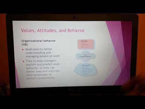 BU 240 Principles of Management: Chapter Eleven -  Individual Differences