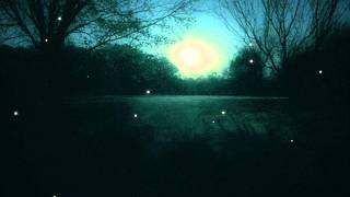 Totenstätte - Winter of Total Darkness