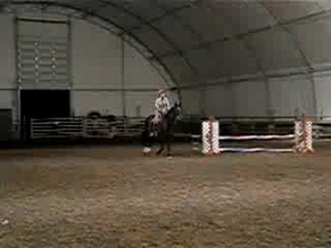 Horse Jumps Flaming Obstacle