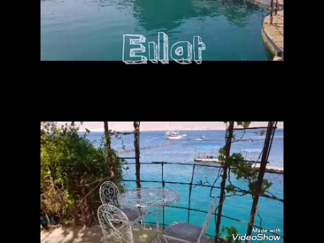 Izrael Eilat.hu társaságában