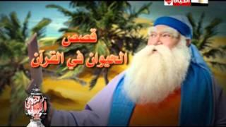 kases Al Hayawan fi Al Qura'n on Al Hayat in Ramadan