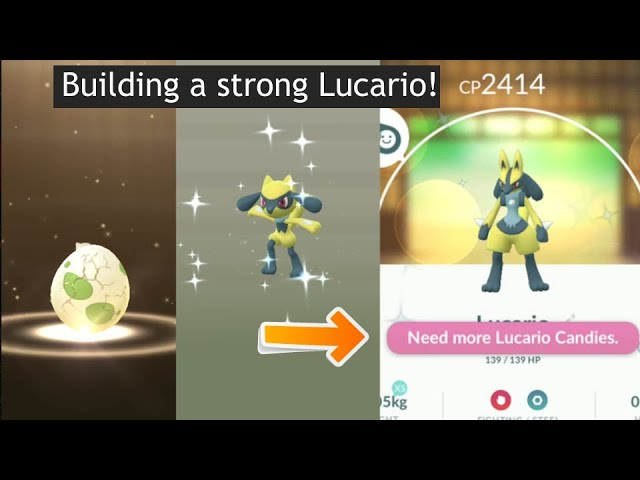 I Build A Strong Shiny Lucario From 2km Egg Shiny Riolu Hatched Youtube