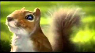 YouTube   Nestle KIT KAT squirrel commercial INDIA aug 2010 2