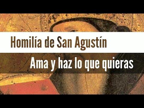 Homilía De San Agustín Ama Y Haz Lo Que Quieras