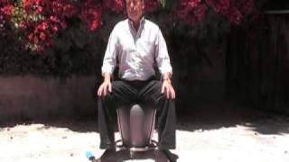 The Ergo Chair - An Ergonomic Exercise Ball Chair