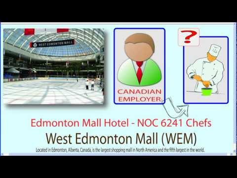 Working In Canada - How To Obtain LMO And Work Permit For Your Job In Canada?