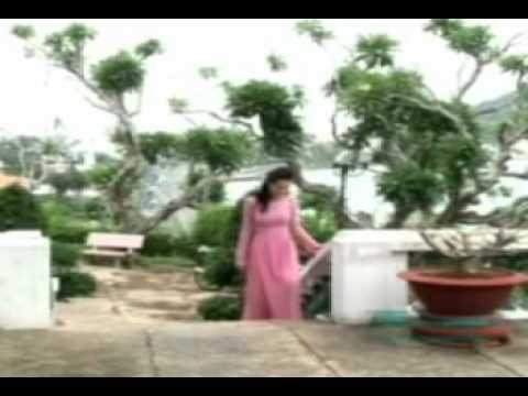 Lưu Chí Vỹ-Như Ý-Hoa Phượng-Chương Đan-Liên khúc chiều mưa 3