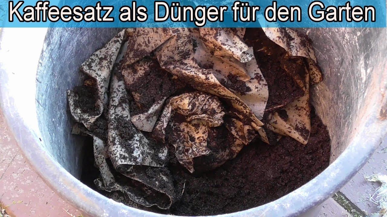Kaffeesatz als Dünger für den Garten& Pflanzen Umweltfreundlicher Kaffee Dünger selber machen  ~ 06015336_Kaffeesatz Dünger Sukkulenten