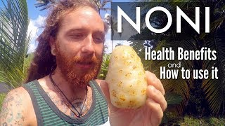 Noni fruit   Health Benefits & How to use it