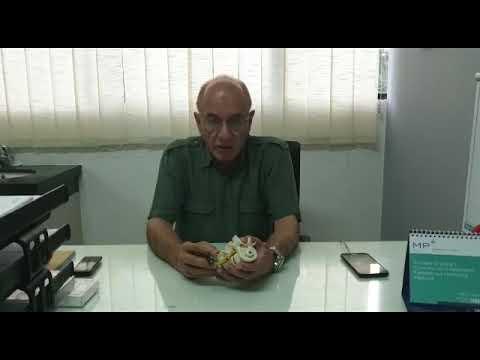 Mengobati nyeri lutut tanpa pembedahan dengan radio frequency, dr.Ali Shahab,Sp.BS