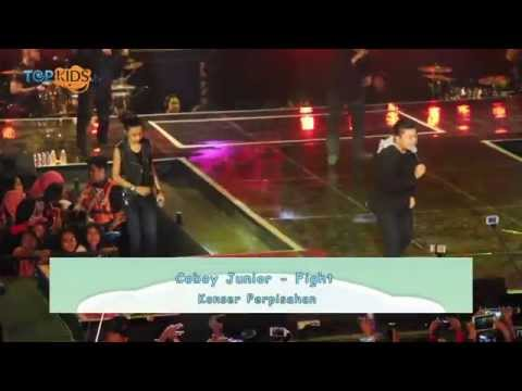 Coboy Junior - Fight