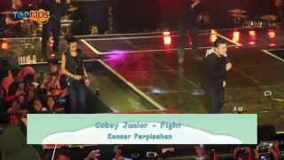 Coboy Junior - Fight