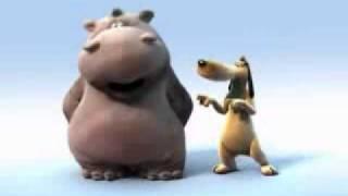 funny animals singing