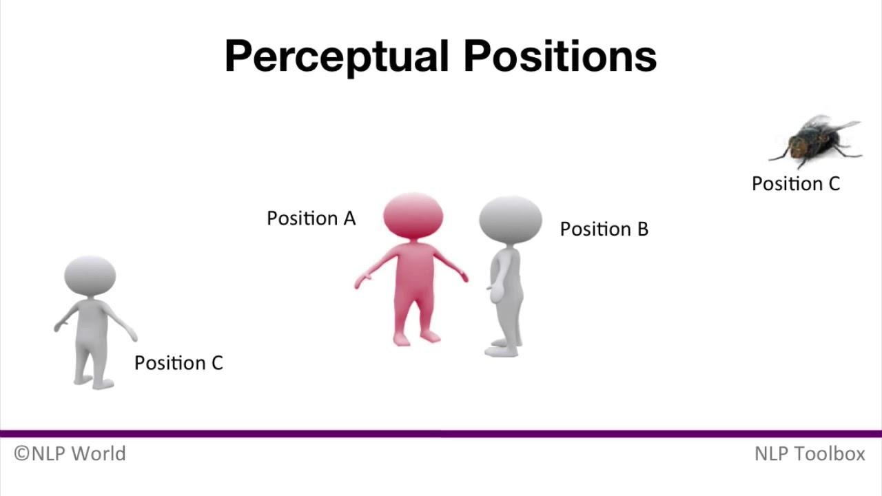 Risultato immagini per Perceptual Positions