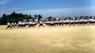 平成27年度高岡高校体育祭 青年体操