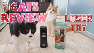 Our cats review a laser toy