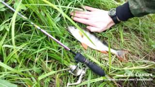 Окунь гигант супер рыбалка видео(Окунь гигант супер рыбалка видео Два окуня один за одним вытащил, первый 520 грамм, второй 275, впечатлений..., 2015-11-27T08:00:00.000Z)