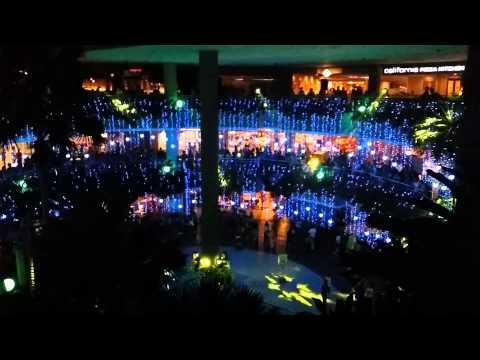 Merry Musical Lights