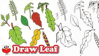 HOW TO DRAW AND COLOR LEAF EASILY FOR KIDS