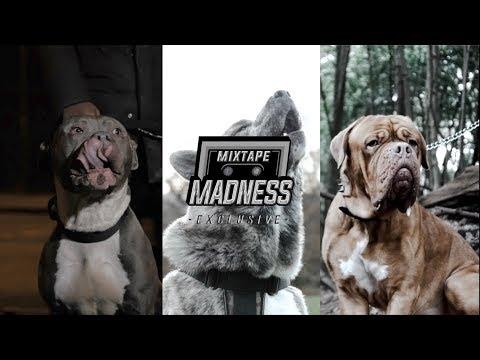 #OFB SJ X BandoKay X Double Lz - Purge (Music Video) | @MixtapeMadness