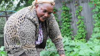 Salome tells us about her allotment