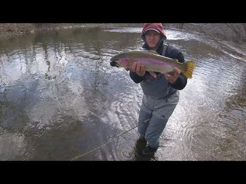 FLY FISHING IN THE WIND (With Some BIG Surprises!!), April 2018