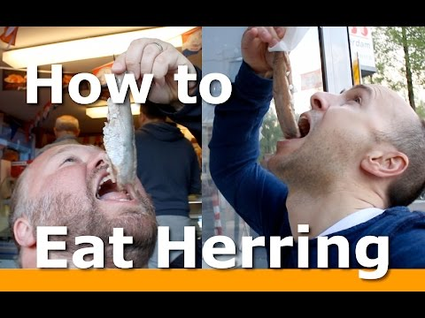 Eating Herring in Holland with Woltersworld