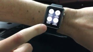 Remote Control Your Tesla With Your Apple Watch!