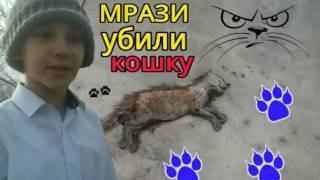 VLOG: МРАЗИ УБИЛИ КОШКУ! //Фейло тv