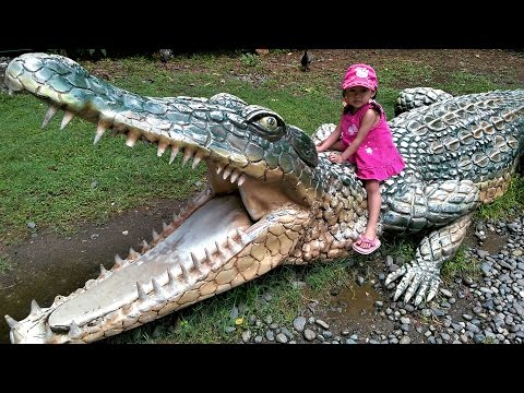 Thumbnail: Outdoor Crocodile Park Zoo for Children - Family Fun Place - Donna The Explorer