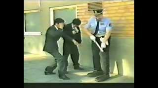 Den elake polisen 1986