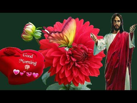 गडमरनग बईबल सटटस Good Morning Bible