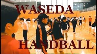 早稲田大学 ハンドボール 2019 インカレ 日体戦