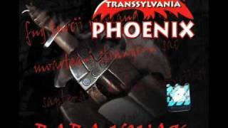 Phoenix - Zori De Zi