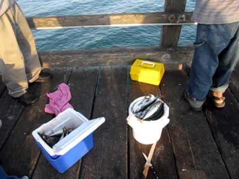 Fishing at Port Hueneme Pier on July 4th 2011