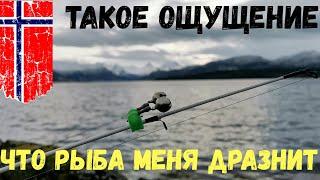 Такое ощущение что рыба меня дразнит Рыбалка НОРВЕГИЯ Рыбалка в Норвегии