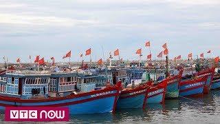 Quảng Ngãi: Kêu gọi ngư dân tìm nơi tránh trú   VTC1