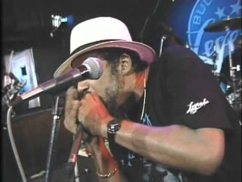 Chicago Blues Live - From Buddy Guy