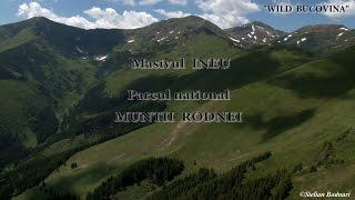 Masivul INEU Parcul naţional MUNŢII RODNEI