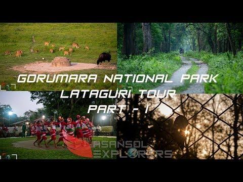 Gorumara National Park | Jungle Safari | Lataguri | Dooars Tour Part 1 | AE
