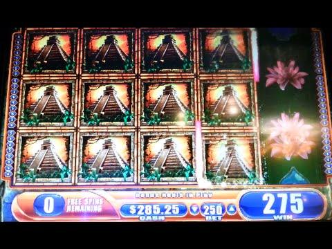 super jungle wild slot machine