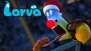 official larva - christmas is around the corner  funny cartoons for children  larva official