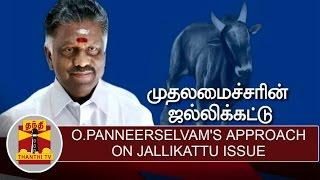 Special News About O.Panneerselvam's Approach On Jallikattu Issue   Thanthi TV