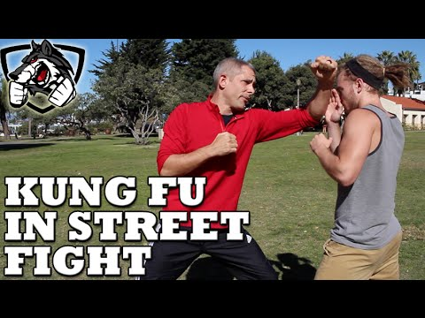 Does Kung Fu Actually Work in a Street Fight/MMA?