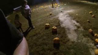 pumpkin collecting 10 2016