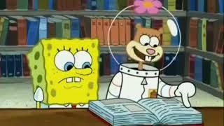 Video Spongebob Versi palembang download MP3, 3GP, MP4, WEBM, AVI, FLV November 2018