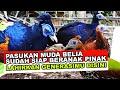 Jangan Sampai Diambil Negara Lain Akhirnya Kita Ternak Sendiri Si Ayam Surga Yang Cantik Ini  Mp3 - Mp4 Download