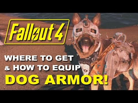 FALLOUT 4: Dogmeat's Dog Armor - Where To Find It & How To Equip It! (Rare Armor Location Guide)